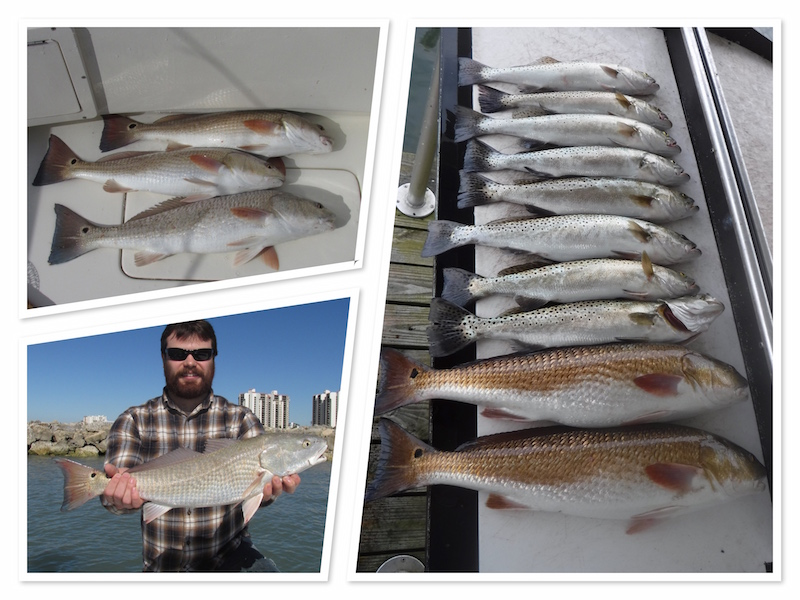 Early Spring Redfish in St Joseph's Sound