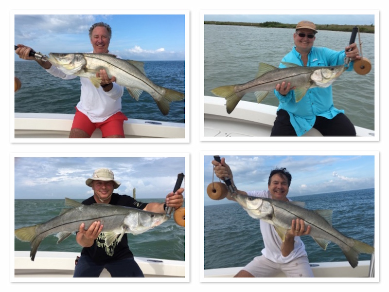 Catching Big Snook Off Clearwater beach