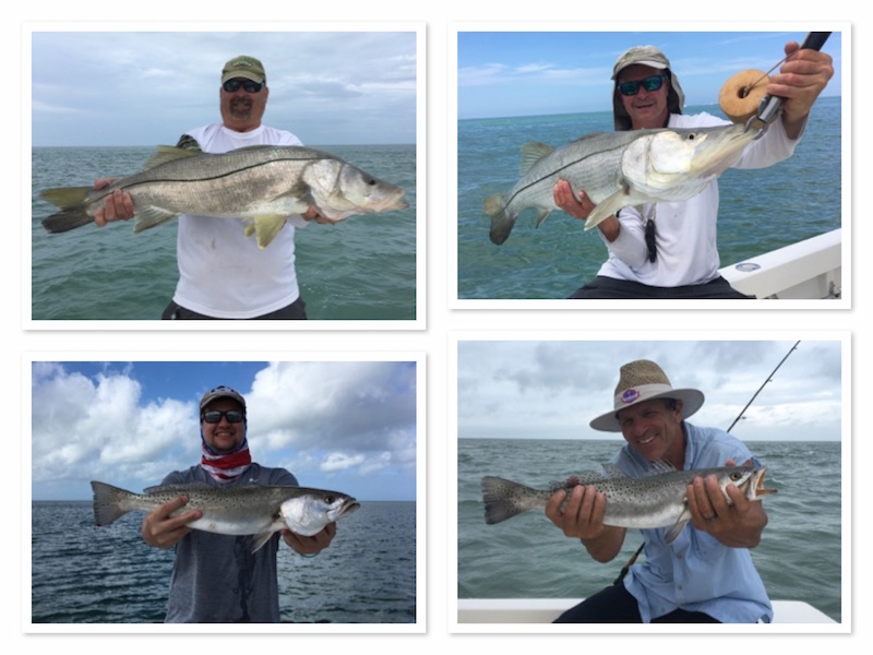 Beach Bonanza for Snook and Trout