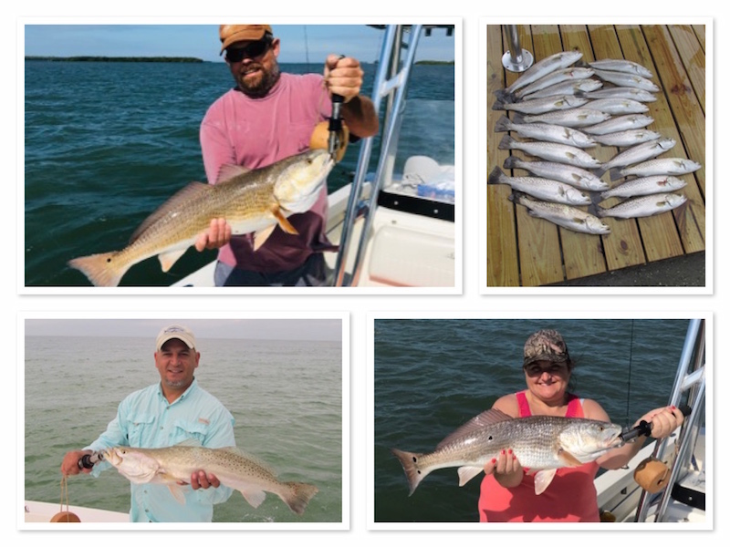 Winter Fishing for Redfish and Trout in Clearwater