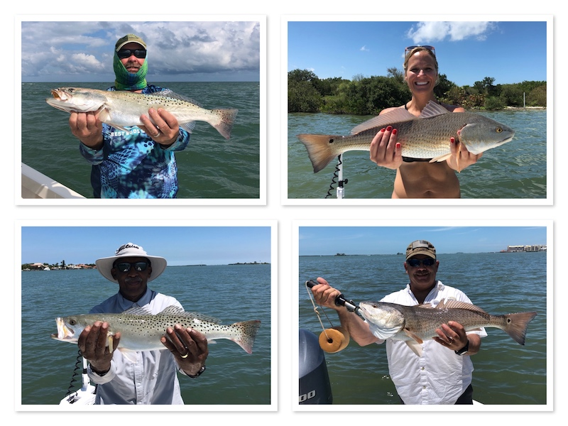 Springtime Redfish and Seatrout in Clearwater