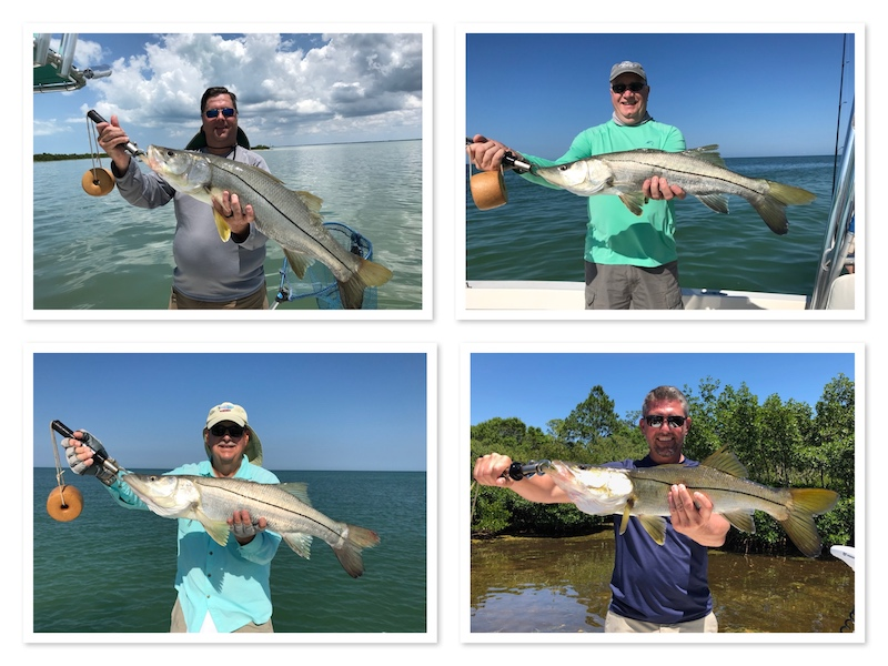 Beach Fishing for Snook in Tampa