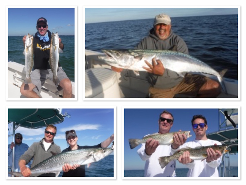 Tampa Fishing Charters for Kingfish
