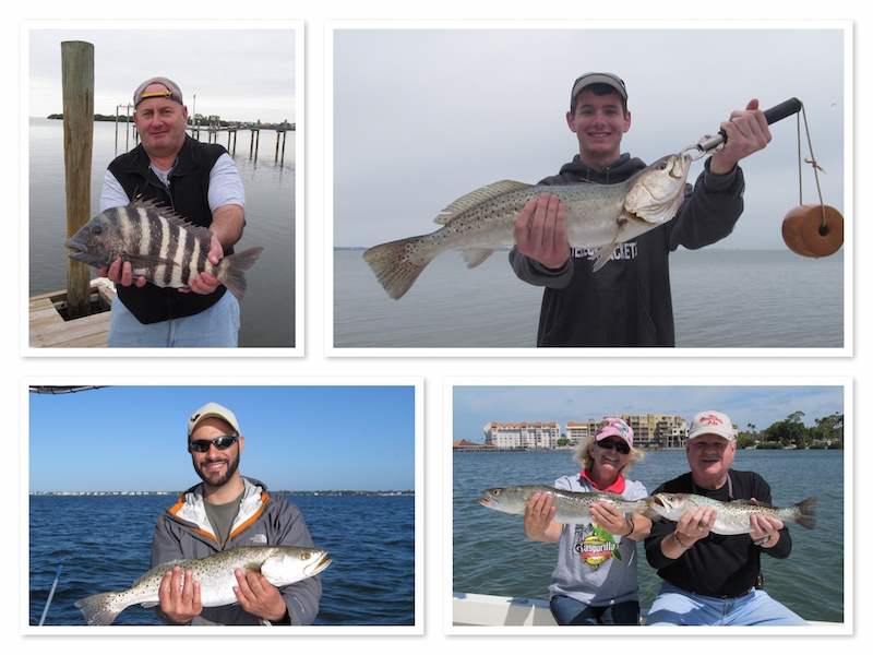 Great Winter Trout Fishing in Clearwater