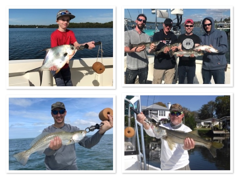 Trout, snook, permit and more in Clearwater Florida