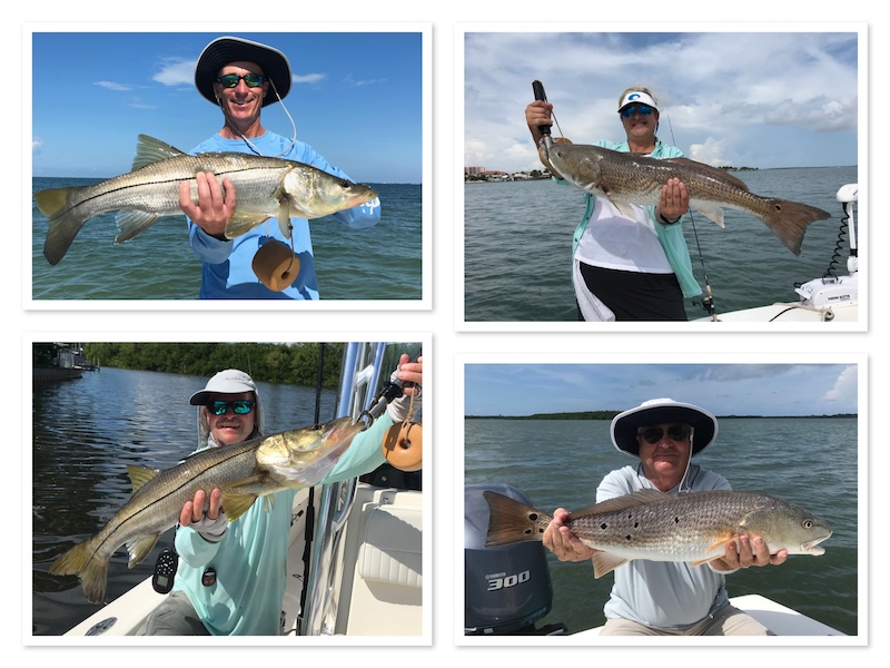 FALL SNOOK AND REDFISH IN TAMPA