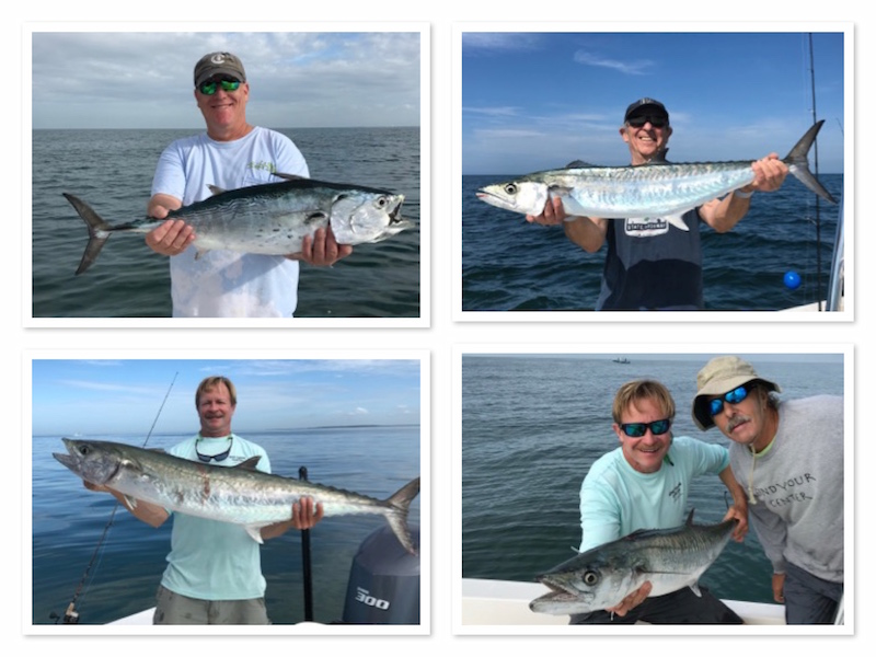 Big Kingfish in Close to Tampa