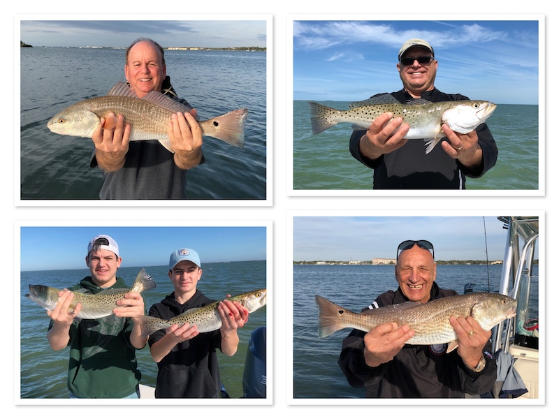 Winter Seatrout and Redfish in Tampa
