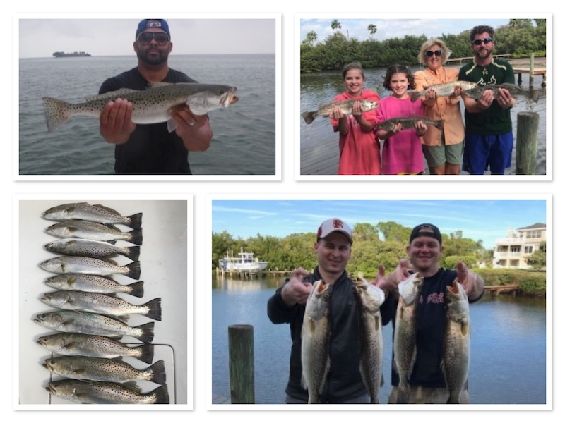 Best Seatrout Fishing in Tampa Clearwater Area