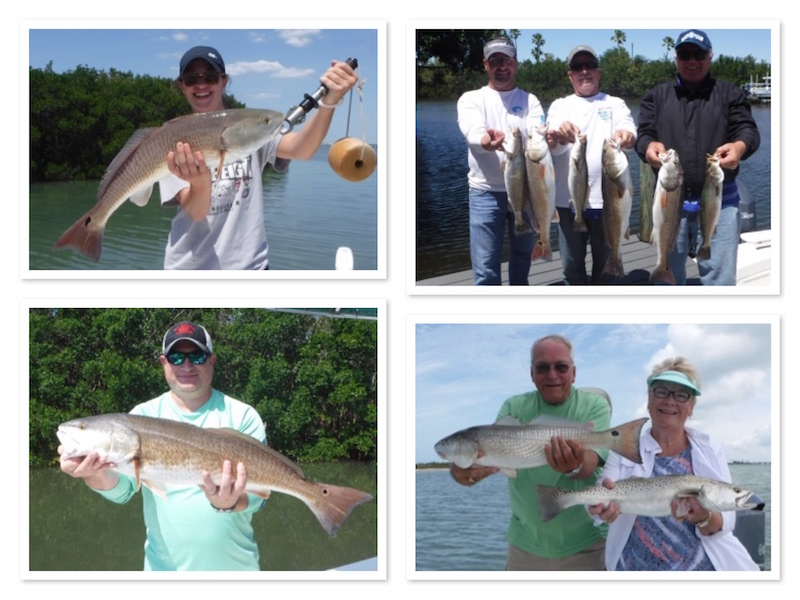 Redfish and trout Fishing in Tampa