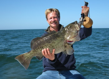 Tampa Fishing for Near Shore Grouper