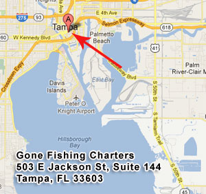 Gone Fishing Charters, 503 E. Jackson St, Tampa, FL